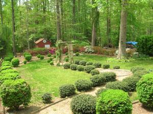 Original Backyard