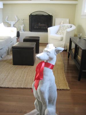 Greyhound Vday