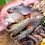 Cuoi-nam-xuat-khau-thuy-san-Viet-toi-Trung-Quoc-du-kien-duoc-hoi-phuc