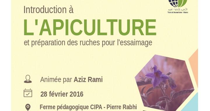 Formation : Introduction à l'apiculture THM