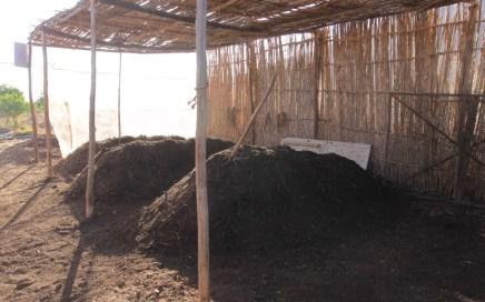 La Fertilité conditionne la qualité de votre sol