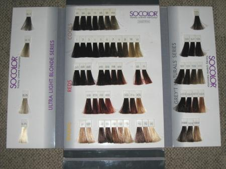 MATRIX SOCOLOR Honey Creme Hair Color Swatch Book Case VGC