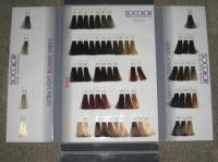 MATRIX SOCOLOR Honey Creme Hair Color Swatch Book Case VGC