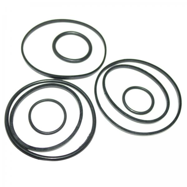 Hydraulic Pump Repair Seal Kit Fits Ford 2600 2610 2810