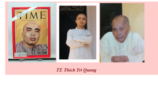 Image result for Thích Trí Quang