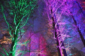 Winterlichter im Luisenpark - 03