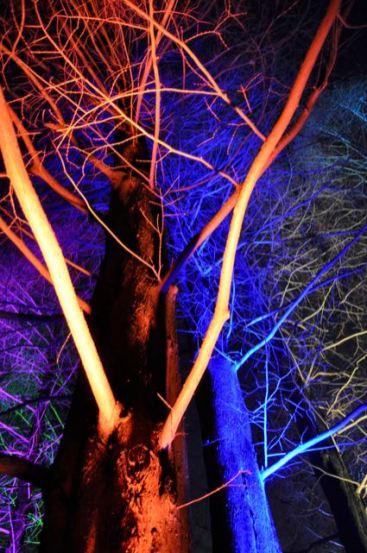 Winterlichter im Luisenpark - 04