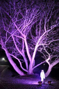 Winterlichter im Luisenpark - 06