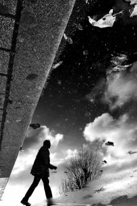 Snapseed_4-3