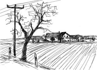 ElbeElsterSk1 Trebus Landschaft mit Feldern