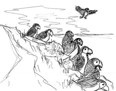 Faeroeer20-Papageitaucher