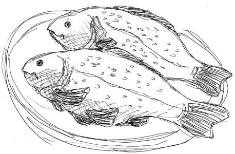 Fische Schleie