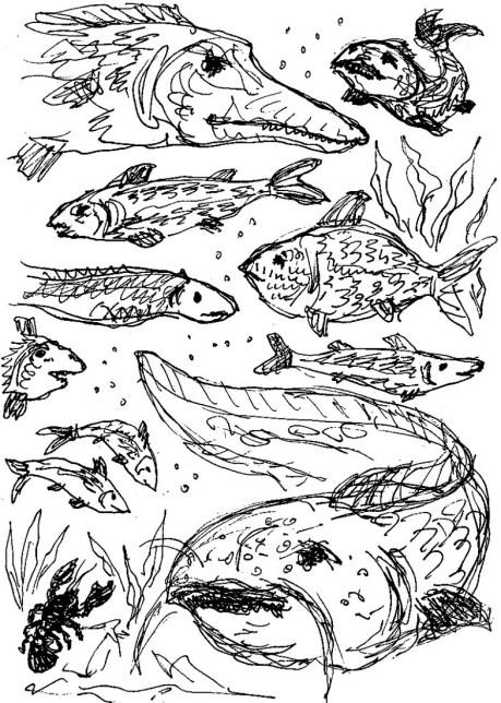 Fische der Uckermark