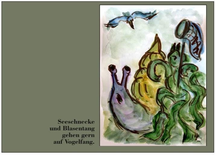 Hagedorn8-Seeschnecke Blasentang