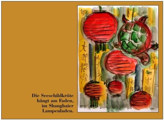 Hagedorn9-Die Seeschildkroete