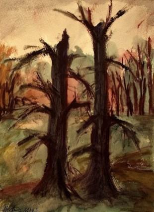Oder11_Zwei Baumstuempfe im Park