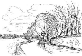 OderSk22 Kunersdorf Landschaft mit Baum