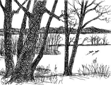 OderSk8 Pritzhagen Kleiner Waldsee