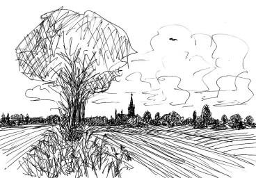 RuppinSk15 Langen-Felderlandschaft