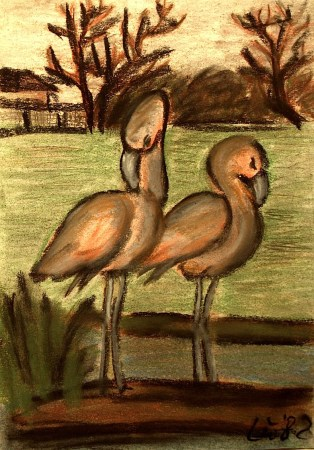 Im Tierpark Friedrichsfelde - Flamingos