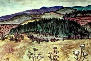 Viernau30-Waldlandschaft 2