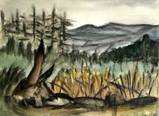 Viernau31-Waldlandschaft 3