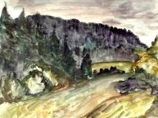 Viernau33-Schwaerzinger Wald2