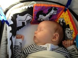 sleeping all the way
