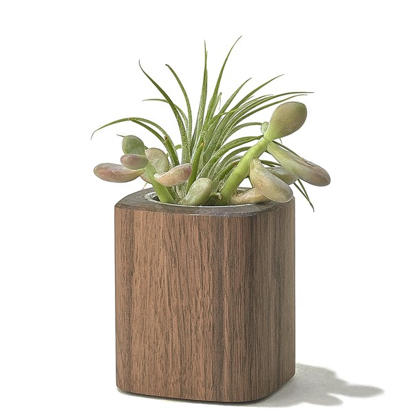 walnut-desk-collection-planter-tall-A1_1_600x600_90