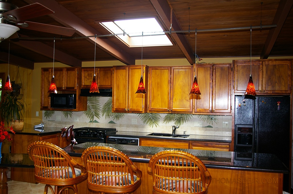 kitchen remodel hawaii faucet remodeling hawaiian backsplash thomas deir honolulu hi artist and design with tropical palm fronds tile murals