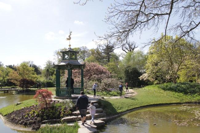 img 0872 Cliveden, a garden visit, part 1