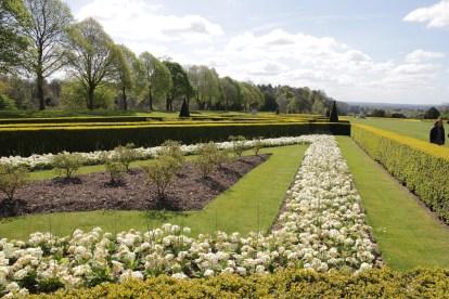 img 0922 Cliveden, a garden visit, part 1