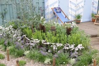 img 1513 Hampton Court Flower Show a world of flowers