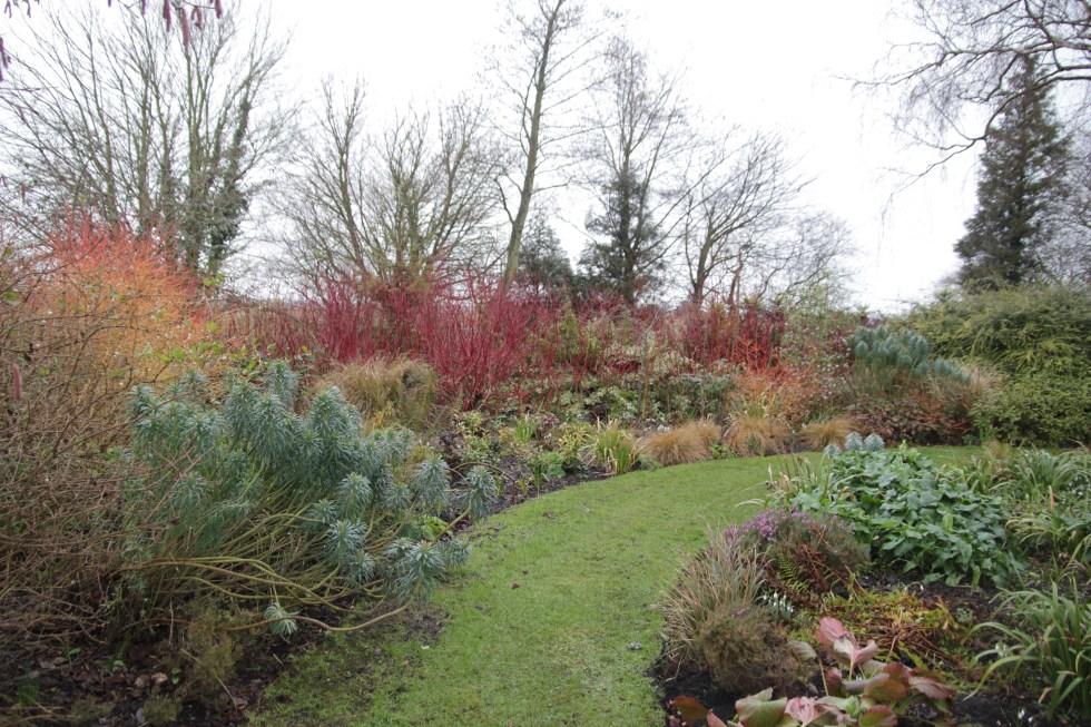 img 4170 Winter at Ellicar Gardens