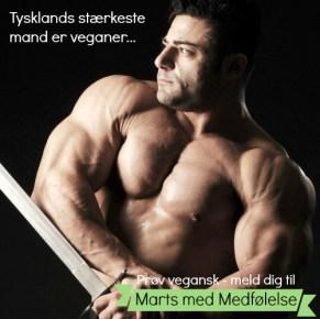 Flere og flere topatleter ser fordelene i en stærk, plantebaseret kost. Tysklands stærkeste mand Patrik Baboumian er veganer for dyrene og har ingen problemer med at få proteiner nok til at slå verdensrekorder.