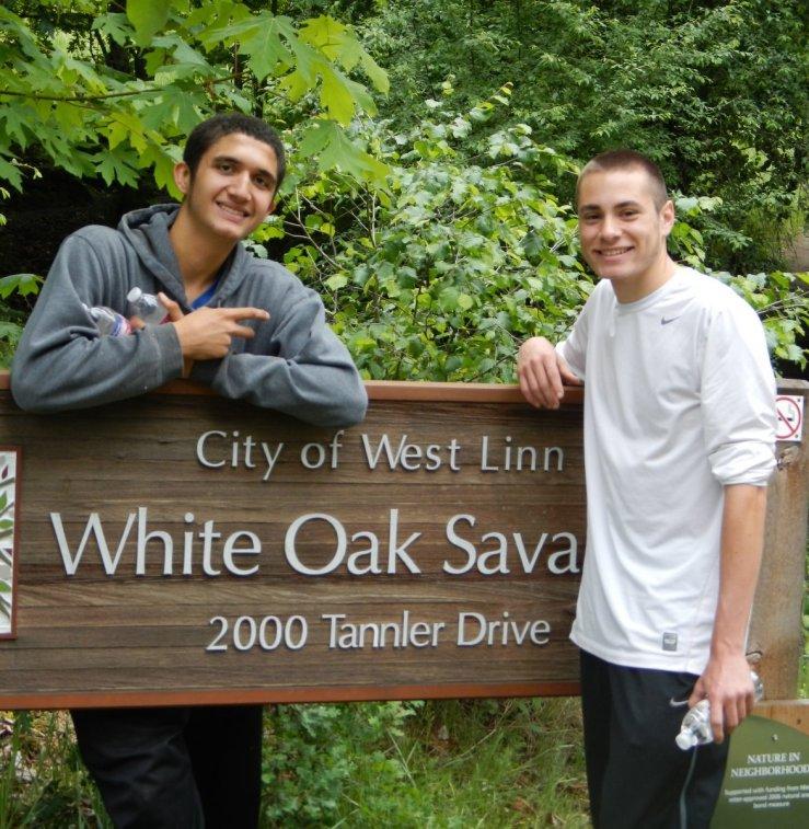 White Oak Savanna