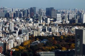 View from: Tokyo Metropolitan Government