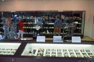 Endō Shell Museum (遠藤貝類博物館)