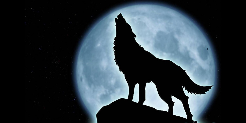 Creature of the Full Moon