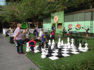 Wanna play chess in the park?