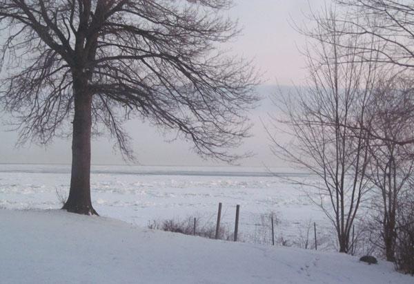Frozen Lake Erie Seen From the Studio 2