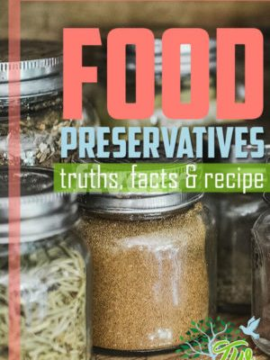 Food Preservatives: truth, facts, & recipe