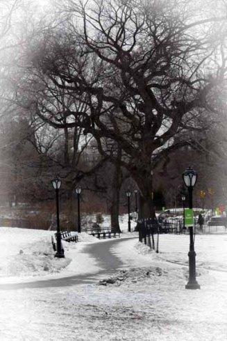 cp_winter walkway