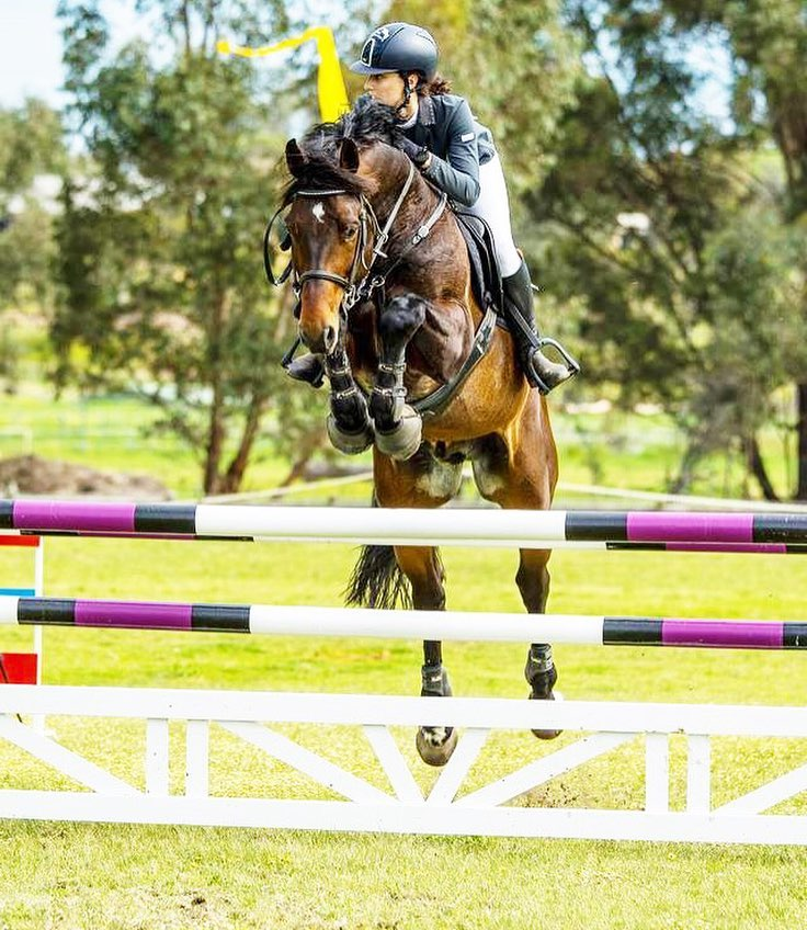 Kentaur Australia Performance Horses Thompson and Redwood