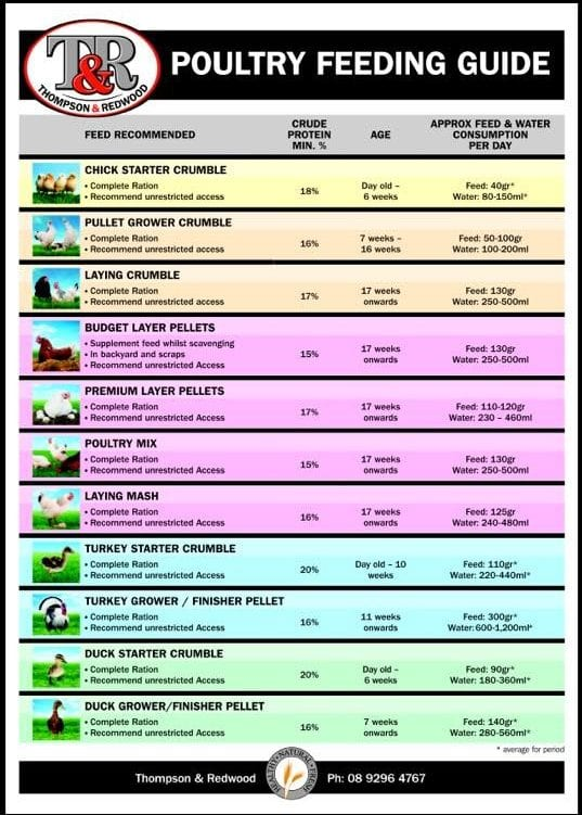 Thompson and Redwood Poultry Feeding Guide