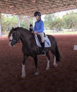 The Training Scale Sustainable Equitation