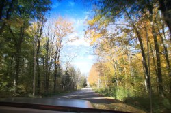 2019-Oct-19-FallClassicCarCruise-Caledon-ThornhillCruisersCarsClub-28