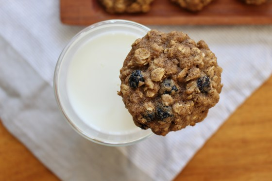 Chewy Oatmeal Blueberry Cookies | Gluten Free | Thoroughly Nourished Life