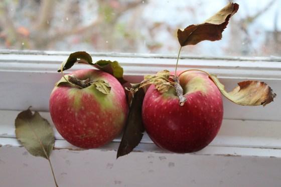 Ginger and Apple Muffins   Vegan   Gluten Free