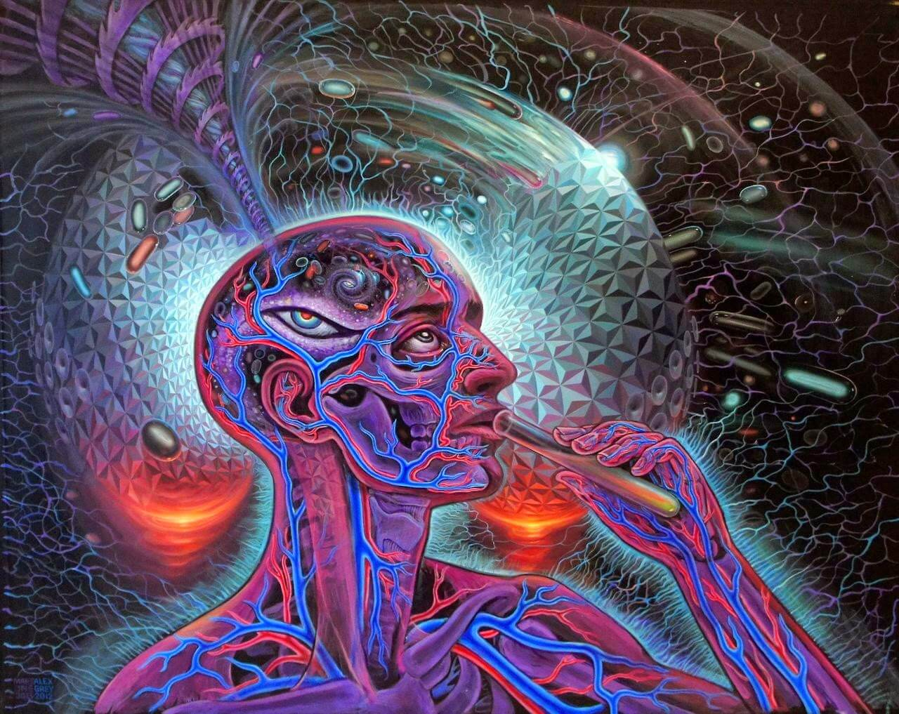 psychedelics and the awakening